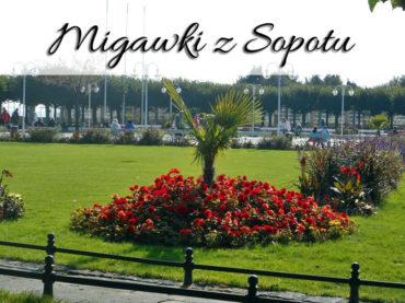 Migawki z Sopotu. Kilka kadrów z nadmorskich krajobrazów