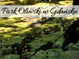 Park Oliwski w Gdańsku. Miejsce idealne nie tylko na ślubne sesje
