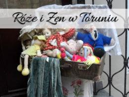 Restauracja Róże i Zen. Miejsce idealne na przyjacielskie spotkania