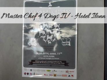 Master Chef 4 Dogs IV – Hotel Ilonn. Ty także możesz wspomóc schroniska