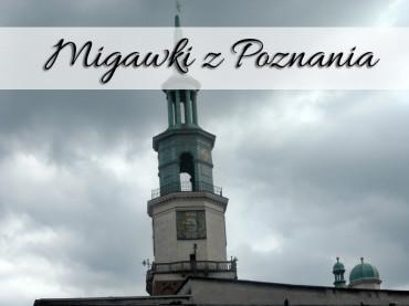 Migawki z Poznania. Daj się skusić na gzik z pyrami