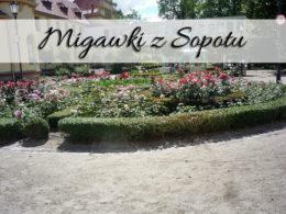 Migawki z Sopotu