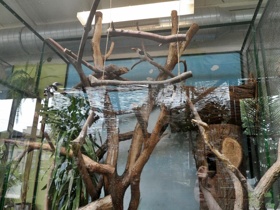 zoo_w_toruniu20