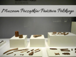 Muzeum Początków Państwa Polskiego w Gnieźnie. Za każdym razem robi wrażenie