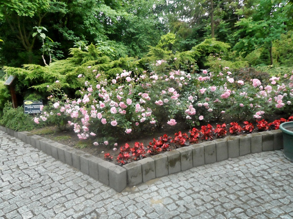Palmiarnia w Łodzi
