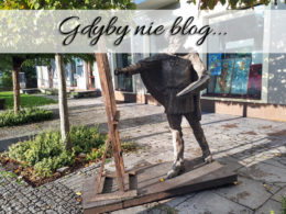 Gdyby nie blog…
