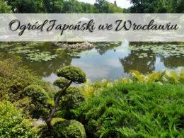 Ogród japoński we Wrocławiu. Naprawdę robi wrażenie