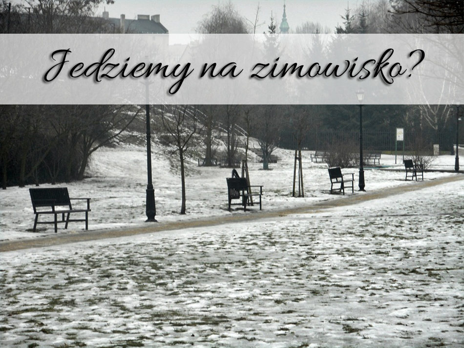 jedziemy_na_zimowisko_znak_zapytania