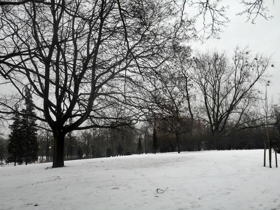 polskie_miasta_zima_torun3