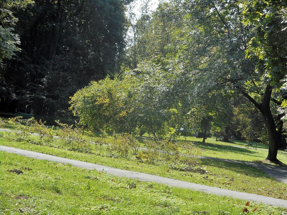 Park Decjusza w Krakowie