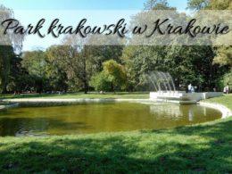 Park krakowski w Krakowie. Robi wrażenie