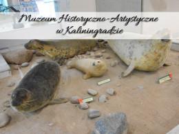 Muzeum Historyczno-Artystyczne w Kaliningradzie. Naprawdę warto się tam wybrać