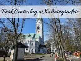 Park Centralny w Kaliningradzie. Zajrzyj do labiryntu luster