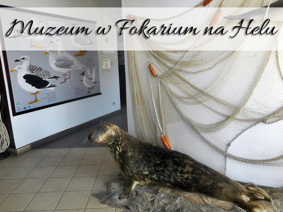 Muzeum w Fokarium na Helu