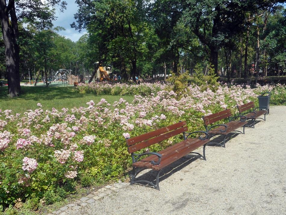 Park miejski w Grudziądzu
