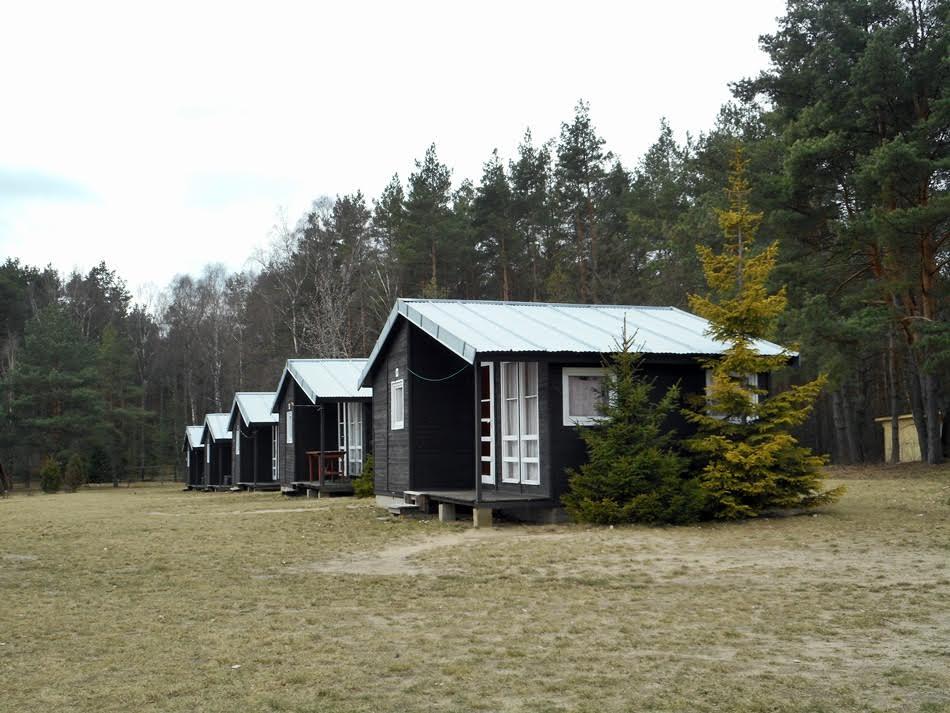 Czy warto pracować w wakacje jako opiekun na kolonii/obozie?