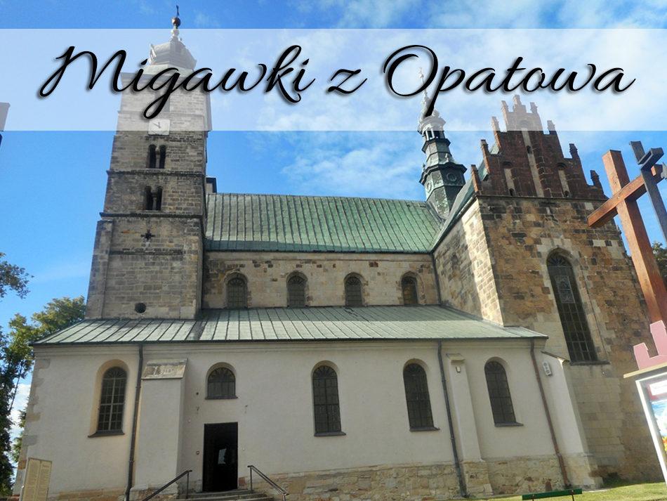 Migawki z Opatowa