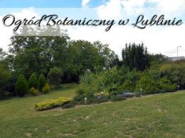 Ogród Botaniczny w Lublinie. Poszukanie głównej bramy może okazać się nieco skomplikowane