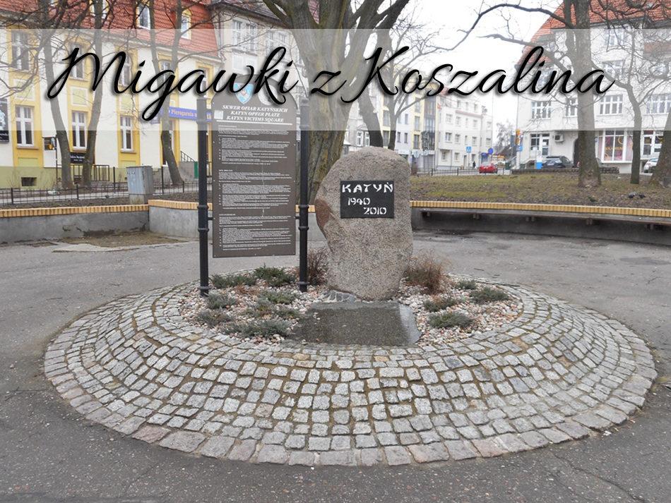 migawki-z-koszalina