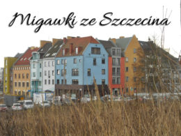 Migawki ze Szczecina. Garść zdjęć z tego pięknego miasta