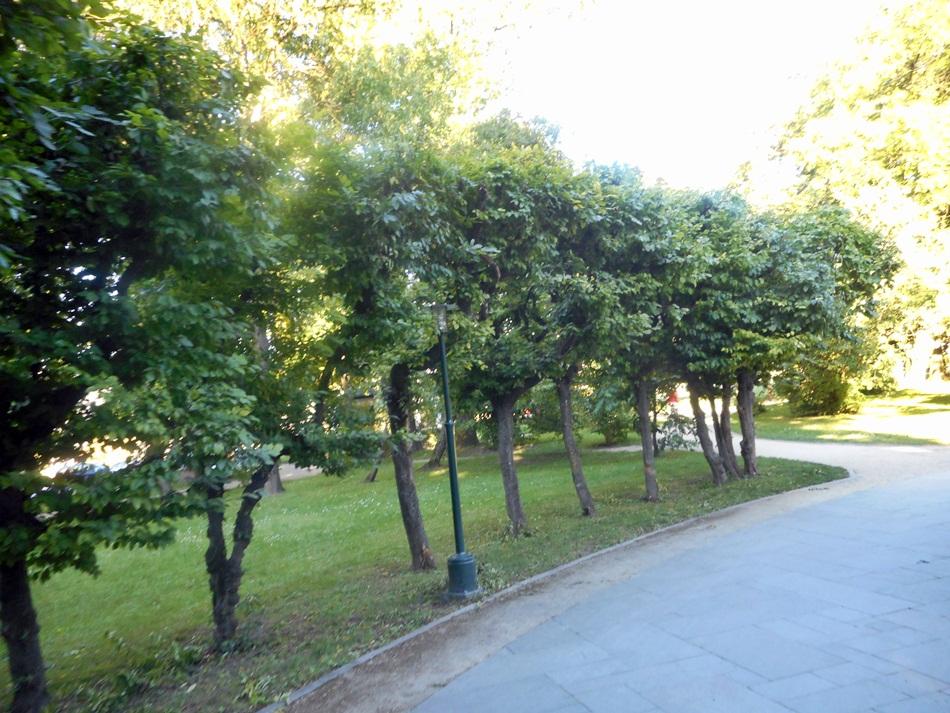park-miejski-w-zamosciu14
