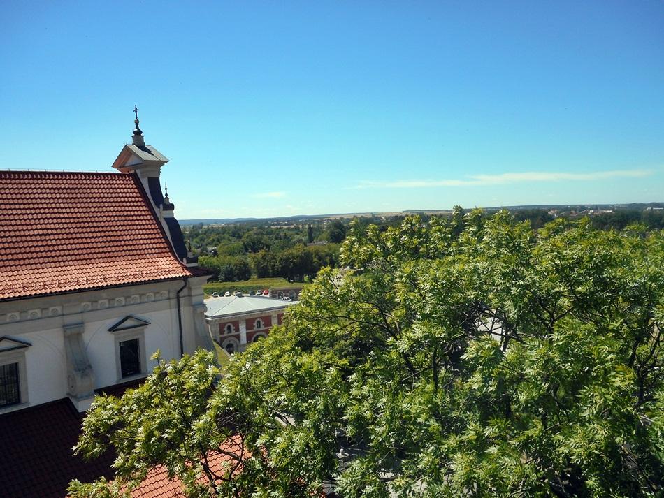 Wieża widokowa w Zamościu