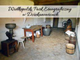 Wielkopolski Park Etnograficzny w Dziekanowicach. Powrót do dawnych czasów