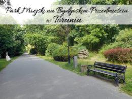 Park Miejski na Bydgoskim Przedmieściu w Toruniu. Mało odwiedzane, ale ładne miejsce