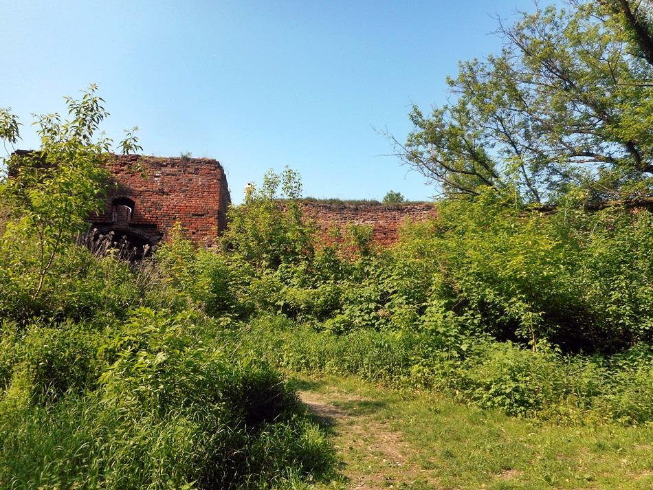 zamek-dybowski-w-toruniu