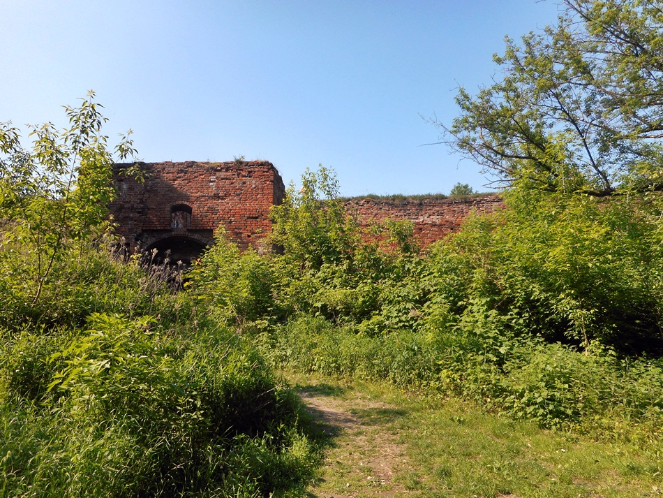 zamek-dybowski-w-toruniu2
