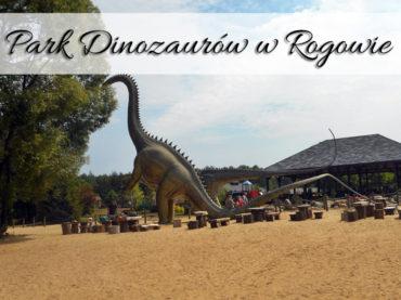 Park Dinozaurów w Rogowie (Zaurolandia). Daj sobie szansę znów być dzieckiem