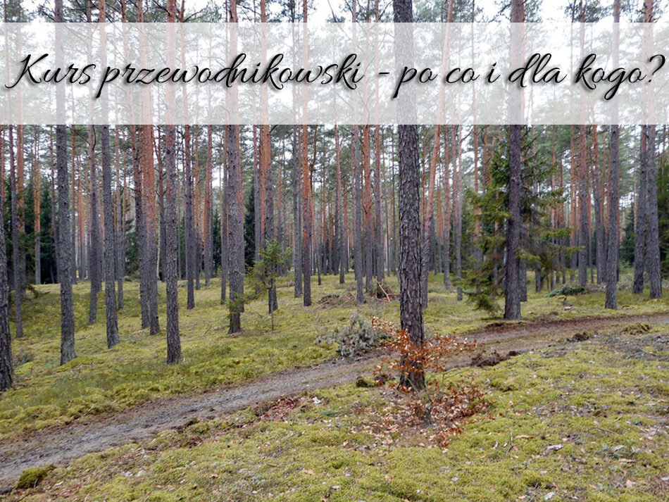 Kurs przewodnikowski - po co i dla kogo
