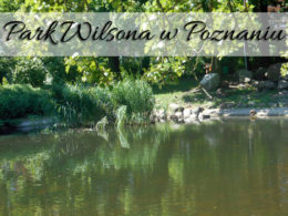 Park Wilsona w Poznaniu. Bardzo blisko poznańskiej Palmiarni