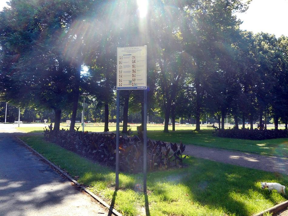 Park Wilsona w Poznaniu