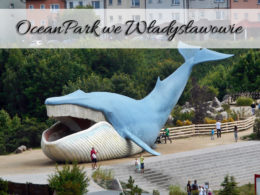 Ocean Park we Władysławowie. Posłuchaj mówiącego wieloryba