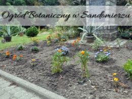 Ogród Botaniczny w Sandomierzu. Tuż przy noclegu i Wąwozie Królowej Jadwigi