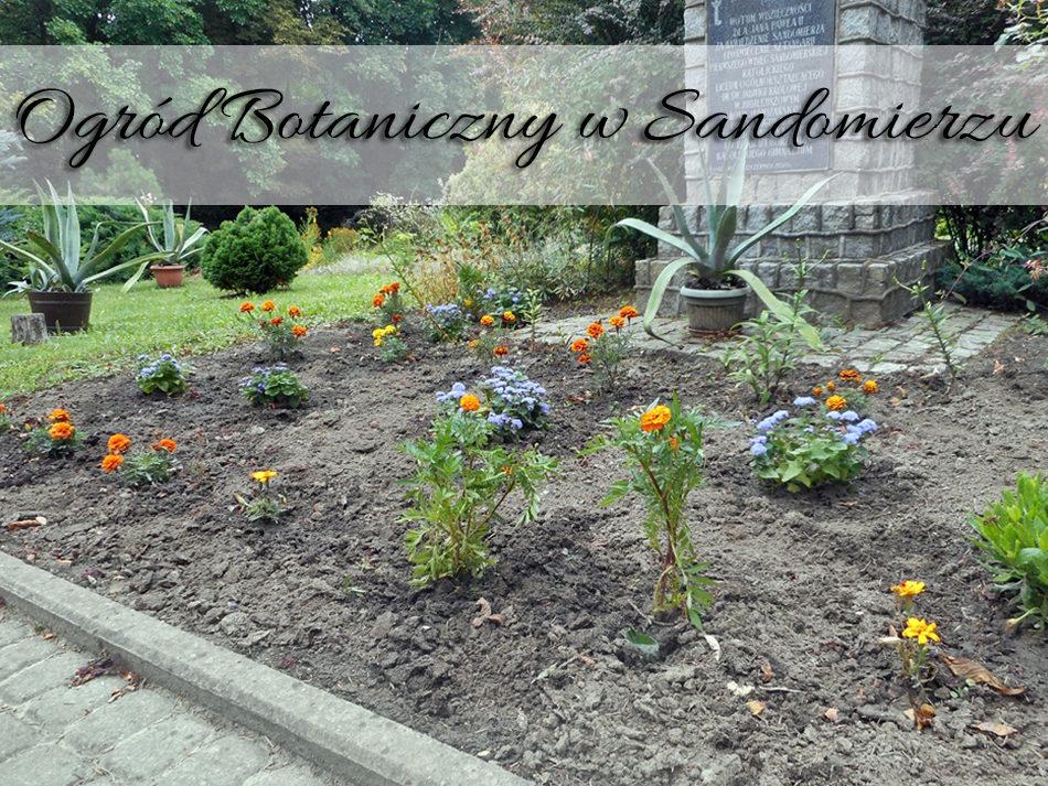 Ogród Botaniczny w Sandomierzu