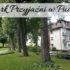 Park Przyjaźni w Pucku. Miejsce warte odwiedzenia