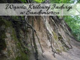 Wąwóz Królowej Jadwigi w Sandomierzu. Miło było wrócić tam po latach