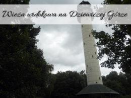 Wieża widokowa na Dziewiczej Górze. Punkt widokowy w Puszczy Zielonka