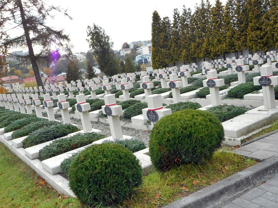 Cmentarz Orląt Lwowskich we Lwowie