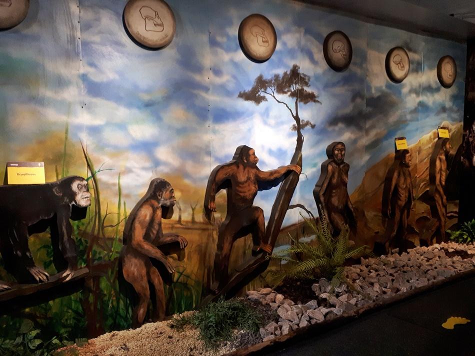 Centrum Neandertalczyka w Chęcinach