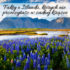 Fakty o Islandii, których nie przeczytasz w żadnej książce