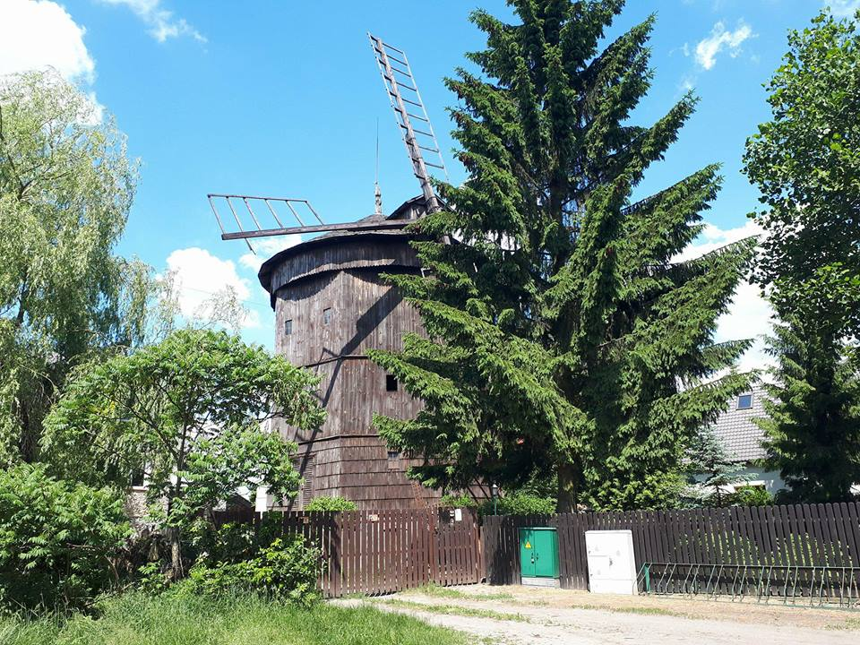 Wiatrak Holender w Rogierówku