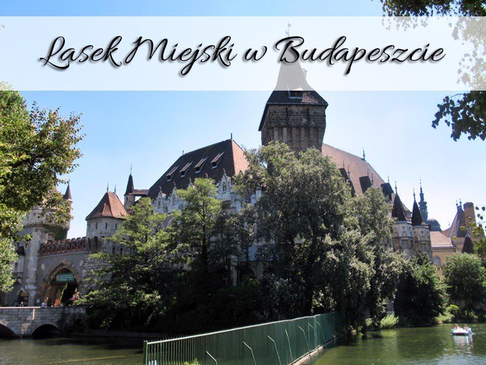 Lasek-Miejski-w-Budapeszcie