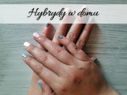 Hybrydy w domu – szybko i tanio