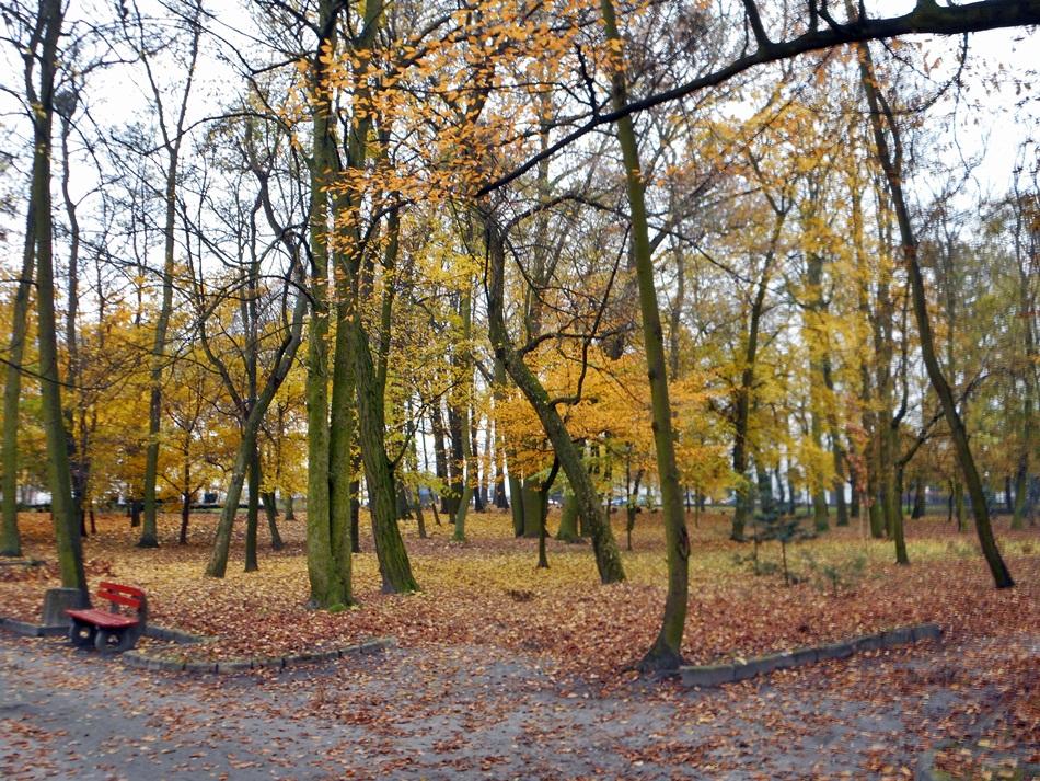 Park Miejski w Słupcy