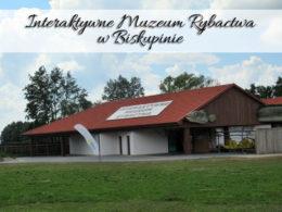 Interaktywne Muzeum Rybactwa w Biskupinie. Atrakcja powstała w 2018 roku
