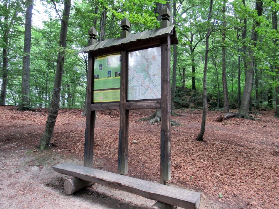 Jaskinia Łokietka w Ojcowskim Parku Narodowym