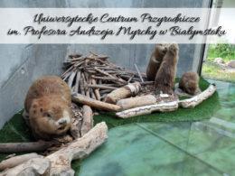 Uniwersyteckie Centrum Przyrodnicze im. Profesora Andrzeja Myrchy w Białymstoku. Darmowa wystawa